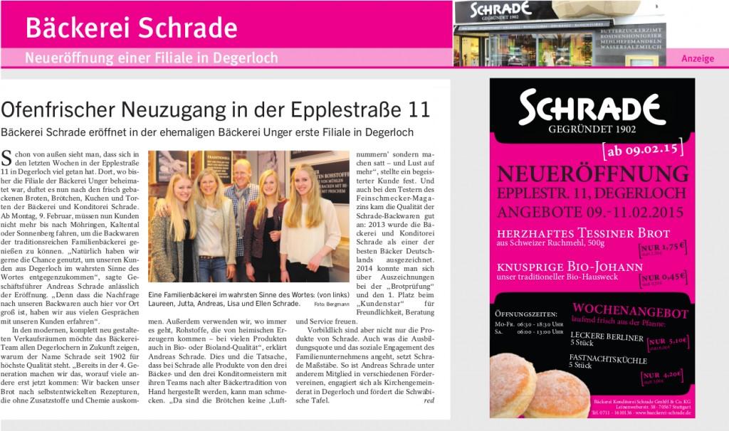 Stuttgarter-Zeitung-BvF_02.2015